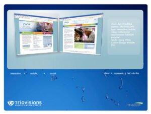 AAI Website Design