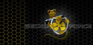 Gecko Force Safety Gear