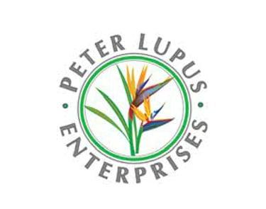 lupus enterprises